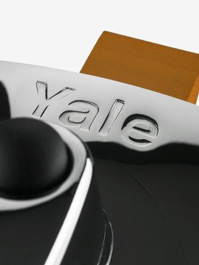 Yale pindlukud