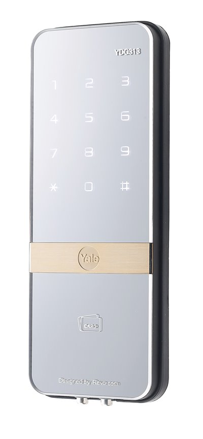 YDG 313