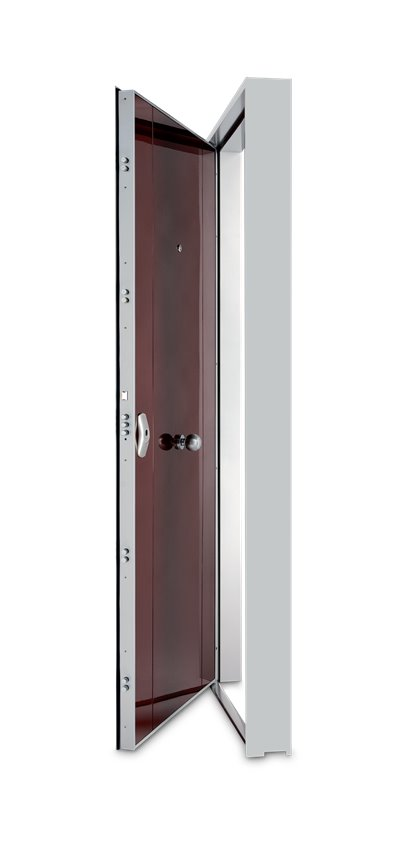 Porta de Alta Segurança - YS1