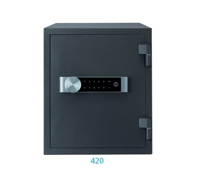 YYFM/420/FG2/B - Large fire safe