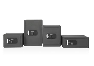 Maximum Security Safes (without fingerprint access)